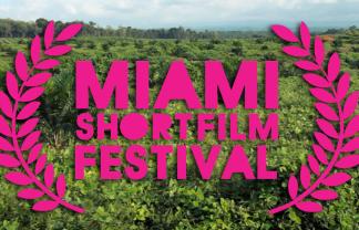 """""""Miami Short Film Festival""""  Miami Short Film Festival TLO MiamiFilmFestival 324x208"""