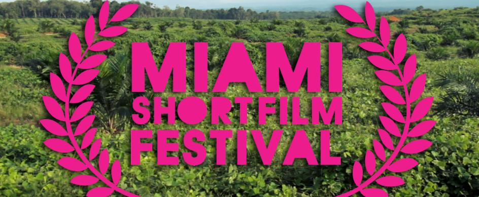 """""""Miami Short Film Festival""""  Miami Short Film Festival TLO MiamiFilmFestival 944x390"""