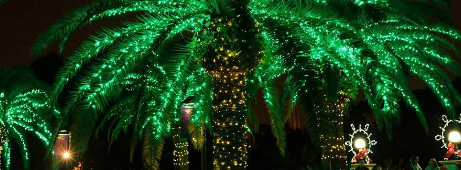Miami Christmas events 2015, best Christmas events 2015, Miami christmas, holidays events 2015, holidays miamis The best Miami Christmas events Discover The best Miami Christmas events cpver 944x350